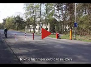 vimeo|25556641